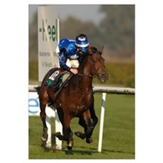Racing Horse Poster
