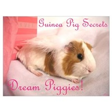 Dream Piggies Poster