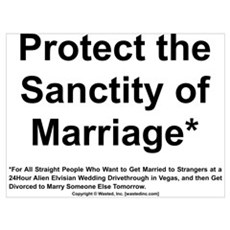 Protect the Sanctity of Marriage* Poster