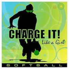 2011 Softball 42 Poster