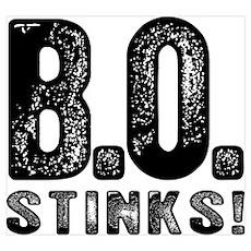 B.O. Stinks Poster