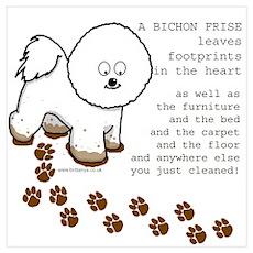 Bichon Frise Poster