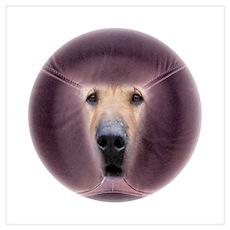 Dog Massage Poster