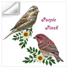 Purple finch Wall Decal