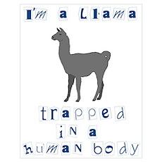 I'm a Llama Poster