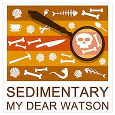 Sedimentary Watson Poster