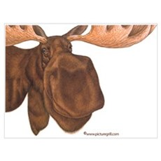 moose Canvas Art