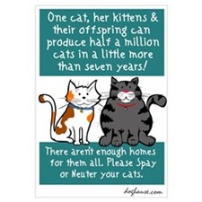 Half a Million Cats - Spay Neuter Prin