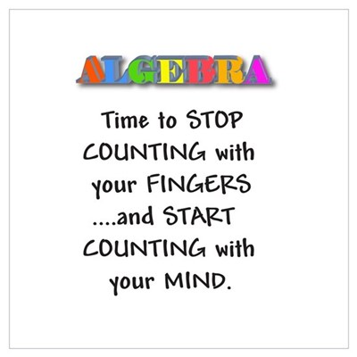 ALGEBRA TIME TO STOP COUNTING Framed Print