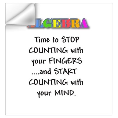 ALGEBRA TIME TO STOP COUNTING Wall Decal
