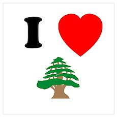 I heart Cedar Poster
