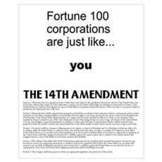 the 14th Amendment Poster