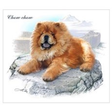 Chow Chow Canvas Art