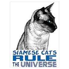 Siamese Universe Poster
