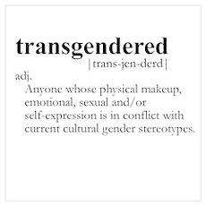 TRANSGENDERED definition Poster