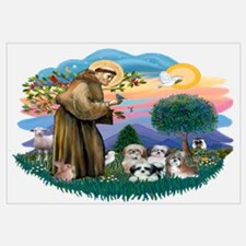 St Francis #2/ Shih Tzus (4)