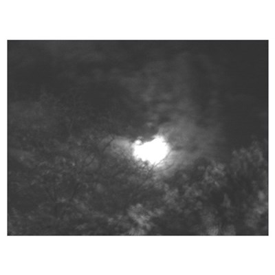 Autumn Moon Canvas Art
