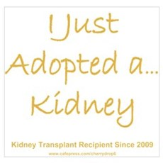2009 Adopted Kidney Transplant Poster