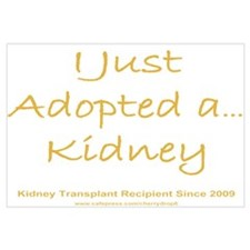 2009 Adopted Kidney Transplant