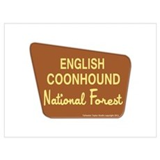 English Coonhound Poster