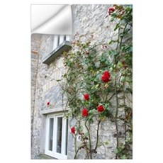 Roses at Cahir Castle Wall Decal