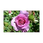 Beautiful Rose 22x14 Wall Peel