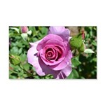 Beautiful Rose 22x14 Wall Peel