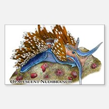Opalescent Nudibranch Decal