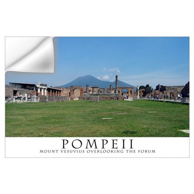Pompeii Forum (Wide view) Wall Decal