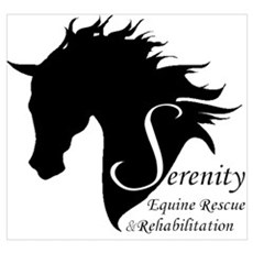 Serenity Canvas Art
