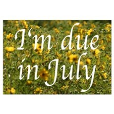 I'm due in July (flowers) Framed Print