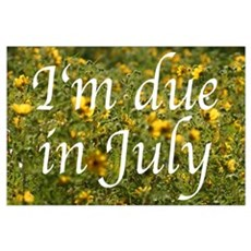 I'm due in July (flowers) Poster