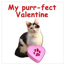 Purrfect Valentine Cat Poster