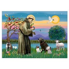 St Francis/3 dogs Poster