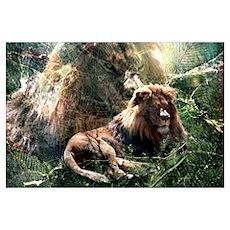 Lion Spirit Poster