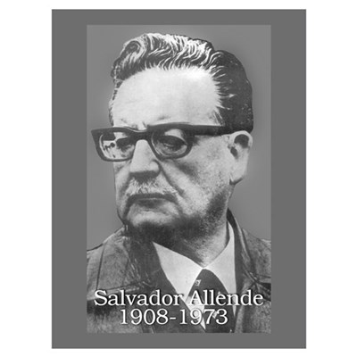 Allende Canvas Art