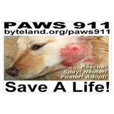 Paws 911 Poster