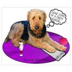 Airedale Valentine's Poster