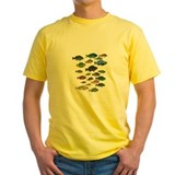 Belize coral reef Mens Classic Yellow T-Shirts