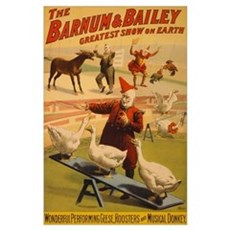 BARNUM AND BAILEY GEESE 11x17 Poster