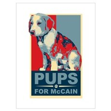 Pups for McCain Canvas Art