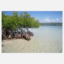 Guilligans Island