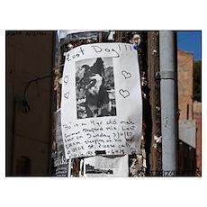 Bisbee 6 Poster