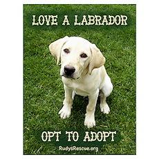 Love A Labrador (12x16) Poster