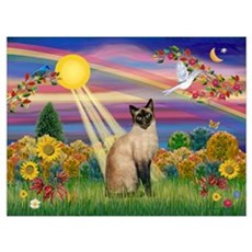Autumn Sun / Siamese Canvas Art