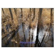 Reflections Canvas Art