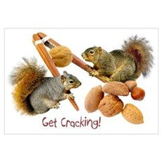 Squirrels Cracking Nuts Poster