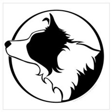 Border Collie Head B&W Poster