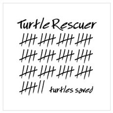 Turtle Rescuer Poster