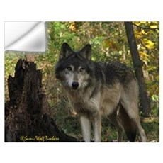 Wolf Spirit Wall Decal